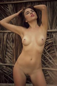 [Image: th_592614737_Niemira_pbp_tropic_1_122_457lo.jpg]
