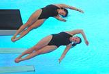 http://img107.imagevenue.com/loc58/th_43130_diving_world_champs_shanghai_2011_032_122_58lo.jpg